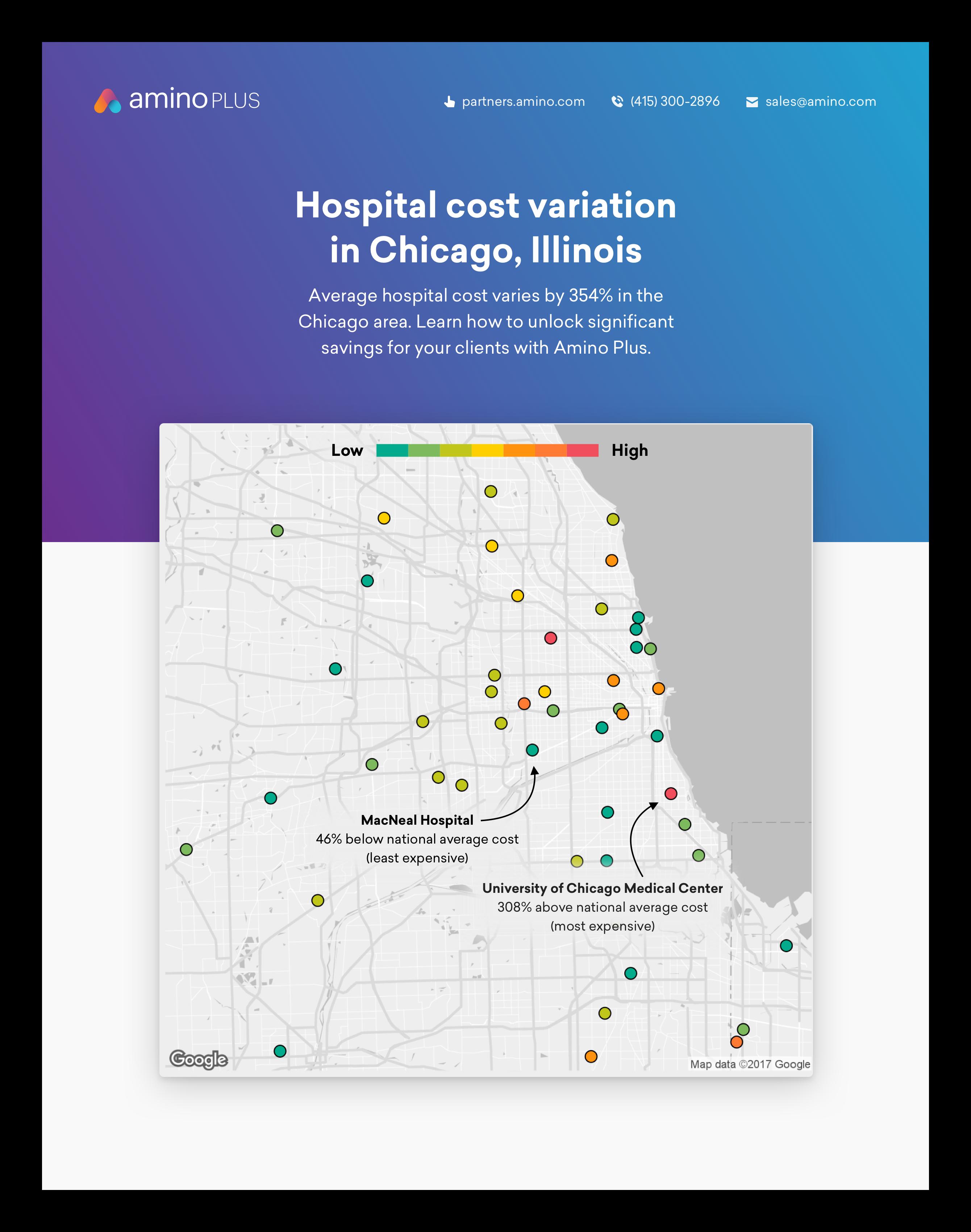 New York hospital cost variation white paper